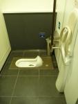 An Old Skool Japanese Toilet.
